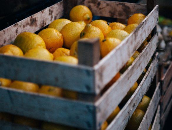 """Zitronenkuchen und die Frage: """"Warum fallen Abschiede oft schwer?"""""""