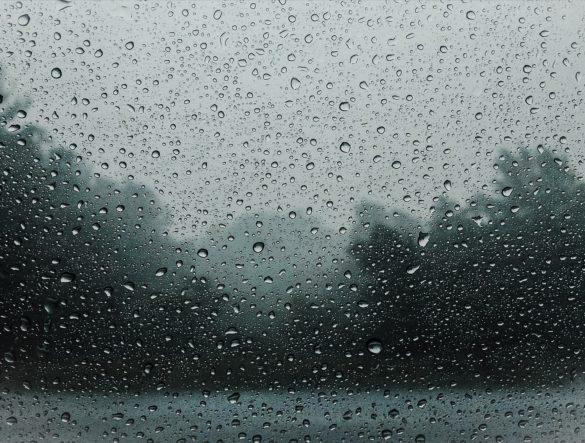 Novemberwetter, Hefeteigschnecken und keine Frage